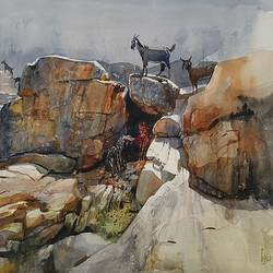 goats on the rock, 28 x 22 inch, bijay  biswaal,cityscape paintings,nature paintings,paintings for living room,fabriano sheet,watercolor,28x22inch,GAL011743216Nature,environment,Beauty,scenery,greenery,rocks,goats,valley