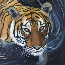 swimming under the stars, 18 x 12 inch, gargi m,18x12inch,canvas,paintings,wildlife paintings,realism paintings,animal paintings,realistic paintings,paintings for dining room,paintings for living room,paintings for office,paintings for hotel,paintings for school,paintings for hospital,oil color,GAL02016832236