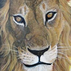 king of the jungle, 12 x 18 inch, gargi m,12x18inch,canvas,paintings,wildlife paintings,realism paintings,animal paintings,realistic paintings,paintings for dining room,paintings for living room,paintings for office,paintings for hotel,paintings for school,paintings for hospital,acrylic color,GAL02016832237