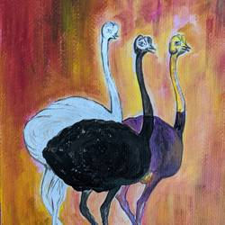 ostrich , 12 x 16 inch, promila singh,12x16inch,thick paper,paintings,impressionist paintings,paintings for kids room,acrylic color,GAL0823232331