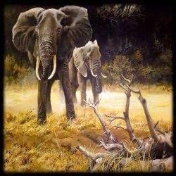 magnificent elephants in africa , 48 x 36 inch, the insane soul,48x36inch,canvas,paintings,wildlife paintings,nature paintings | scenery paintings,animal paintings,paintings for dining room,paintings for living room,paintings for bedroom,paintings for office,paintings for hotel,paintings for school,paintings for hospital,acrylic color,GAL02055432423