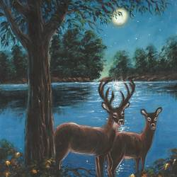 the deer couple in the moonlight, 12 x 16 inch, niraj pradhan,12x16inch,canvas board,paintings,wildlife paintings,landscape paintings,nature paintings | scenery paintings,art deco paintings,realism paintings,realistic paintings,love paintings,paintings for dining room,paintings for living room,paintings for bedroom,paintings for office,paintings for kids room,paintings for hotel,paintings for kitchen,paintings for school,paintings for hospital,acrylic color,GAL049232478