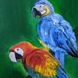 beauty of parrots, 18 x 14 inch, promila singh,18x14inch,thick paper,paintings,still life paintings,paintings for living room,acrylic color,GAL0823232601