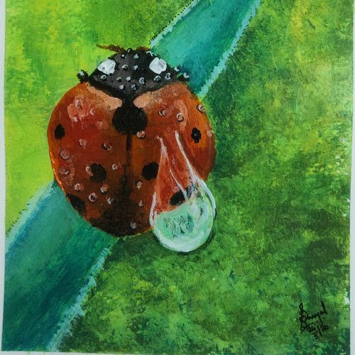 morning dew, 8 x 6 inch, soumyajit sanyal,8x6inch,thick paper,paintings,wildlife paintings,nature paintings | scenery paintings,realism paintings,realistic paintings,paintings for living room,paintings for office,paintings for kids room,paintings for hotel,acrylic color,paper,GAL02082632602