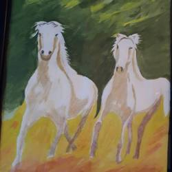 horses, 12 x 17 inch, binita sengupta,12x17inch,paper,paintings,wildlife paintings,paintings for living room,paintings for office,watercolor,GAL02082532621
