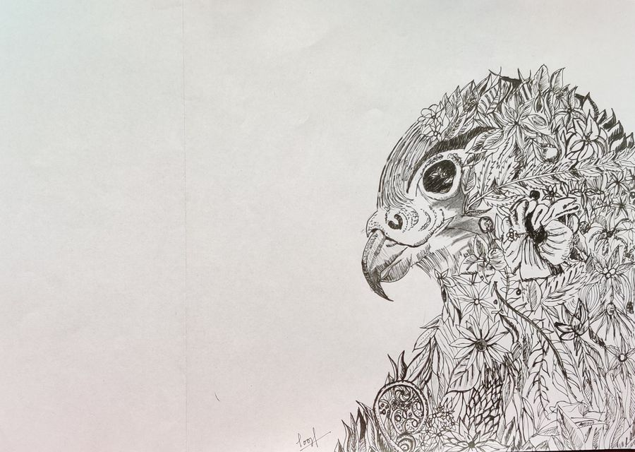 falcon, 8 x 12 inch, pooja lokesh,8x12inch,paper,paintings for living room,paintings for office,fine art drawings,graffiti drawings,illustration drawings,paintings for living room,paintings for office,pen color,ball point pen,paper,GAL02084432631