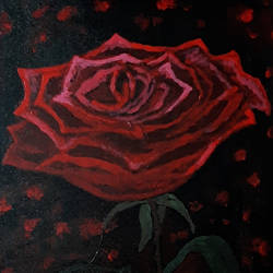 red rose, 12 x 16 inch, tejal bhagat,12x16inch,canvas board,paintings,abstract paintings,flower paintings,nature paintings | scenery paintings,abstract expressionism paintings,art deco paintings,expressionism paintings,illustration paintings,impressionist paintings,realism paintings,surrealism paintings,contemporary paintings,love paintings,children paintings,acrylic color,GAL02041532641