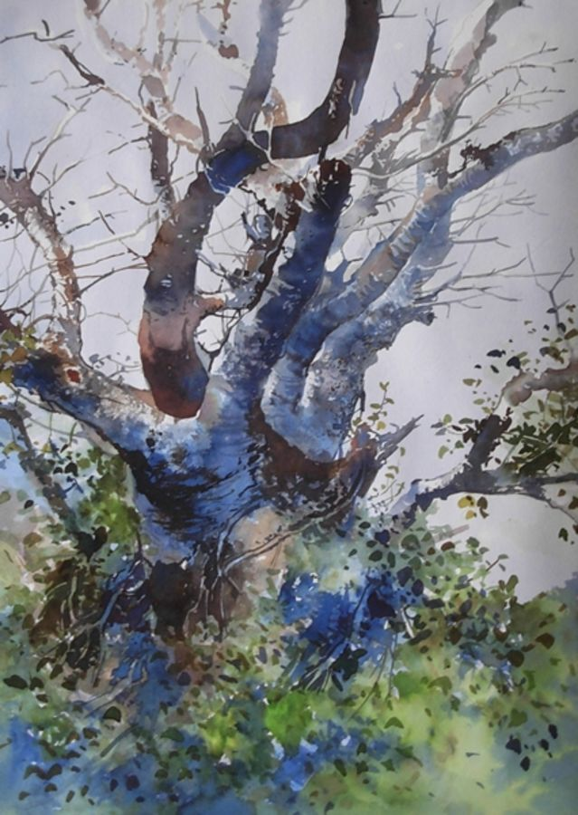 the tree, 11 x 16 inch, bijay  biswaal,cityscape paintings,nature paintings,paintings for living room,paper,watercolor,11x16inch,GAL011743270Nature,environment,Beauty,scenery,greenery,trees,beautiful