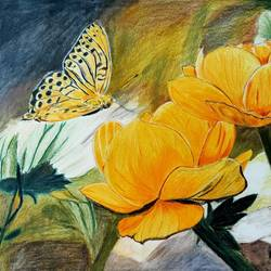 flowers and butterfly, 14 x 10 inch, vishnu jyoti,14x10inch,drawing paper,drawings,realism drawings,paintings for living room,pencil color,GAL01951832761