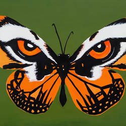 eye of the butterfly, 24 x 30 inch, pratyush  singh ,24x30inch,canvas,wildlife paintings,paintings for living room,paintings for living room,acrylic color,GAL02099132784