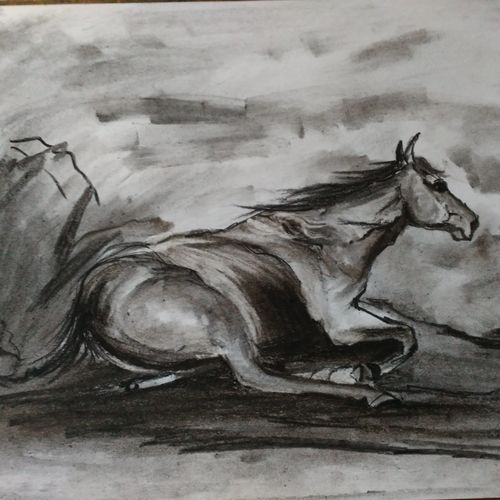 horse 1, 12 x 8 inch, shankhadeep  mondal,12x8inch,paper,drawings,fine art drawings,paintings for dining room,paintings for living room,paintings for bedroom,paintings for office,paintings for bathroom,paintings for kids room,paintings for hotel,paintings for kitchen,paintings for school,paintings for hospital,charcoal,GAL01403032794