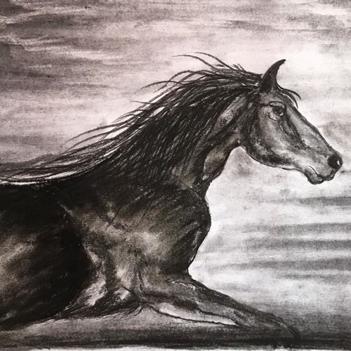 horse 2, 11 x 8 inch, shankhadeep  mondal,11x8inch,paper,drawings,fine art drawings,paintings for dining room,paintings for living room,paintings for bedroom,paintings for office,paintings for bathroom,paintings for kids room,paintings for hotel,paintings for kitchen,paintings for school,paintings for hospital,charcoal,GAL01403032795