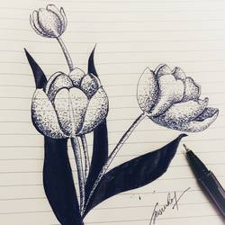 tulips, 6 x 8 inch, susree roy,6x8inch,paper,drawings,abstract drawings,fine art drawings,paintings for living room,paintings for office,paintings for kids room,paintings for school,pen color,ball point pen,GAL02111732904