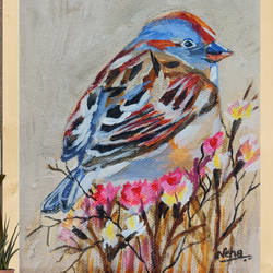 house sparrow , 5 x 5 inch, neha  gupta,5x5inch,canvas,modern art paintings,still life paintings,nature paintings | scenery paintings,photorealism paintings,realism paintings,surrealism paintings,animal paintings,paintings for dining room,paintings for living room,paintings for bedroom,paintings for office,paintings for bathroom,paintings for kids room,paintings for hotel,paintings for kitchen,paintings for school,paintings for dining room,paintings for living room,paintings for bedroom,paintings for office,paintings for bathroom,paintings for kids room,paintings for hotel,paintings for kitchen,paintings for school,acrylic color,GAL02043232911