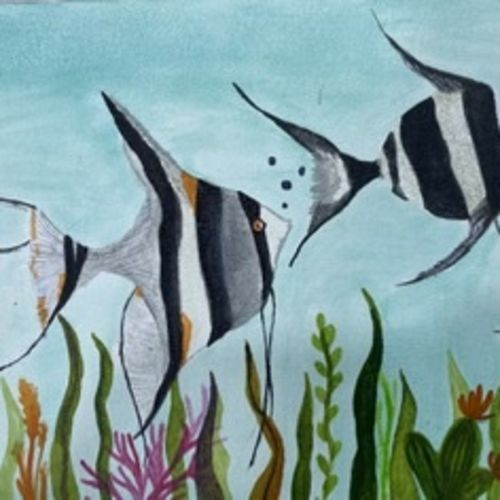 angel fish , 9 x 12 inch, saru sridhar,9x12inch,canvas,wildlife paintings,nature paintings | scenery paintings,animal paintings,paintings for living room,paintings for bedroom,paintings for hotel,paintings for living room,paintings for bedroom,paintings for hotel,acrylic color,GAL02115332959