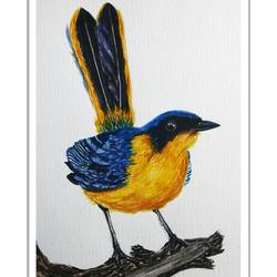 colourful bird, 6 x 8 inch, vishala prasad,6x8inch,drawing paper,paintings,wildlife paintings,paintings for dining room,paintings for living room,paintings for bedroom,paintings for office,paintings for kids room,paintings for hotel,paintings for school,paintings for dining room,paintings for living room,paintings for bedroom,paintings for office,paintings for kids room,paintings for hotel,paintings for school,watercolor,GAL02123233066