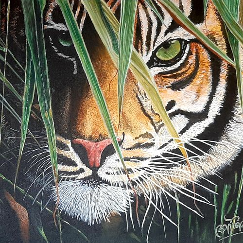 the scouting , 24 x 20 inch, kaushik chongdar,24x20inch,canvas,paintings,wildlife paintings,portrait paintings,paintings for living room,paintings for bedroom,paintings for office,paintings for hotel,acrylic color,GAL02130033102