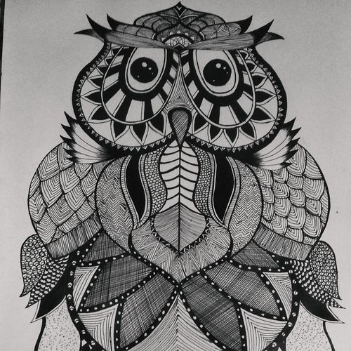 owl, 11 x 22 inch, siuli mandal,11x22inch,drawing paper,paintings for living room,paintings for bedroom,paintings for office,paintings for hotel,paintings for living room,paintings for bedroom,paintings for office,paintings for hotel,pen color,ball point pen,GAL02130433145