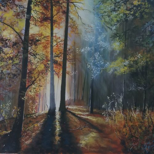 forest fraeshenss, 34 x 24 inch, md moin ,34x24inch,canvas,paintings,nature paintings | scenery paintings,acrylic color,GAL01096033391