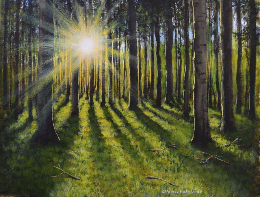 sunrise, 12 x 16 inch, chinmay bahulekar,12x16inch,canvas,paintings,landscape paintings,nature paintings   scenery paintings,realistic paintings,paintings for dining room,paintings for living room,paintings for bedroom,paintings for office,paintings for bathroom,paintings for kids room,paintings for hotel,paintings for kitchen,paintings for school,paintings for hospital,acrylic color,GAL0720433398
