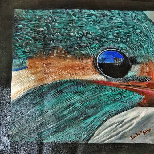 portrait -kingfisher closeup, 12 x 12 inch, inderjeet singh,12x12inch,canvas,paintings,wildlife paintings,figurative paintings,paintings for dining room,paintings for living room,paintings for bedroom,paintings for office,paintings for bathroom,paintings for kids room,paintings for hotel,paintings for kitchen,oil color,GAL0571533490