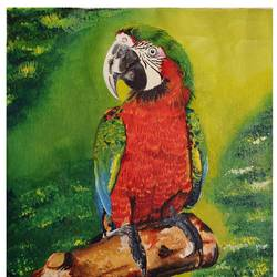 red and green macaw parrot, 11 x 12 inch, rachita bhaumik ,11x12inch,canvas,animal paintings,acrylic color,GAL02099633585