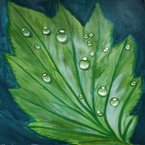 dew drops, 10 x 8 inch, savita mandhotra,10x8inch,thick paper,paintings,nature paintings   scenery paintings,paintings for dining room,paintings for dining room,acrylic color,GAL02178833629