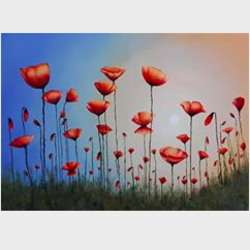 opium field, 20 x 16 inch, reshma s,20x16inch,canvas,paintings,flower paintings,acrylic color,GAL02185333649