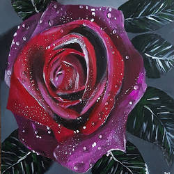 red rose, 16 x 24 inch, tejal bhagat,16x24inch,canvas,paintings,flower paintings,nature paintings | scenery paintings,abstract expressionism paintings,expressionism paintings,illustration paintings,photorealism paintings,photorealism,realism paintings,surrealism paintings,realistic paintings,love paintings,paintings for dining room,paintings for living room,paintings for bedroom,paintings for office,paintings for bathroom,paintings for kids room,paintings for hotel,paintings for kitchen,paintings for school,paintings for hospital,acrylic color,GAL02041533745