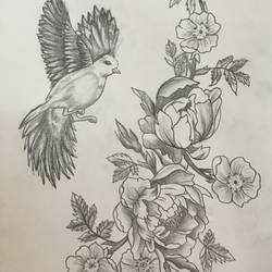 sign of peace, 12 x 17 inch, linda joy j,12x17inch,drawing paper,drawings,fine art drawings,paintings for living room,paintings for bedroom,paintings for office,paintings for hotel,graphite pencil,paper,GAL02197533805
