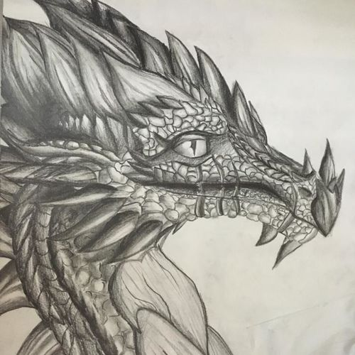 dragon, 12 x 17 inch, linda joy j,12x17inch,drawing paper,drawings,fine art drawings,paintings for dining room,paintings for living room,paintings for bedroom,paintings for office,graphite pencil,paper,GAL02197533812