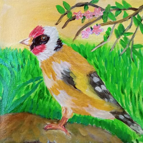 goldfinch on a rock amid grass and foliage, 10 x 8 inch, reema pereira,10x8inch,canvas,paintings,wildlife paintings,paintings for dining room,paintings for living room,paintings for bedroom,acrylic color,oil color,GAL02172033860