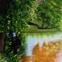 forest lake, 12 x 15 inch, kumar ranadive,12x15inch,canvas,landscape paintings,paintings for dining room,paintings for dining room,acrylic color,GAL01956933905