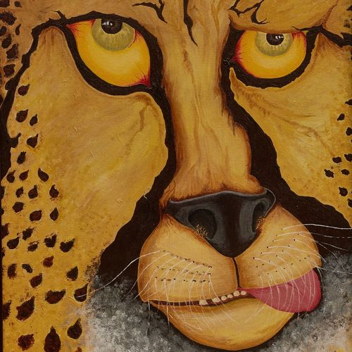 the baffled cheetah, 20 x 26 inch, alphonse joseph  pinheiro,wildlife paintings,paintings for dining room,animal paintings,canvas,acrylic color,20x26inch,GAL012273418