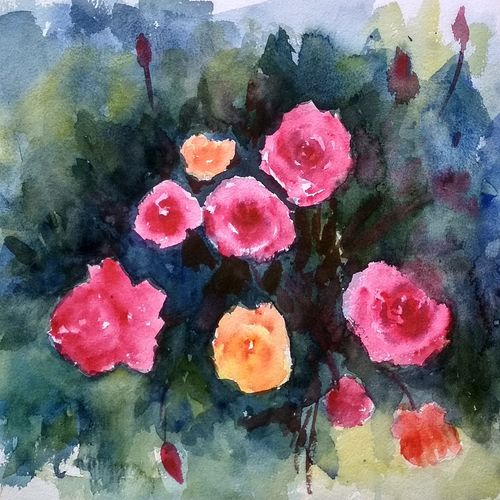 flower 2020_2020, 15 x 11 inch, anamika s,15x11inch,paper,paintings,flower paintings,still life paintings,nature paintings | scenery paintings,paintings for dining room,paintings for living room,paintings for bedroom,paintings for office,paintings for bathroom,paintings for hotel,paintings for school,paintings for hospital,paintings for dining room,paintings for living room,paintings for bedroom,paintings for office,paintings for bathroom,paintings for hotel,paintings for school,paintings for hospital,watercolor,GAL0414534202
