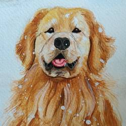 golden retriever , 6 x 8 inch, dr pratishtha rastogi,6x8inch,brustro watercolor paper,paintings,wildlife paintings,figurative paintings,modern art paintings,portrait paintings,illustration paintings,photorealism paintings,photorealism,portraiture,dog painting,children paintings,kids paintings,paintings for living room,paintings for office,paintings for kids room,paintings for hotel,paintings for school,paintings for hospital,watercolor,paper,GAL02238934417