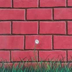 a white flower by the red wall, 36 x 21 inch, iftheqar hussain,36x21inch,canvas,paintings,flower paintings,landscape paintings,still life paintings,nature paintings | scenery paintings,realism paintings,contemporary paintings,realistic paintings,acrylic color,GAL02260234530