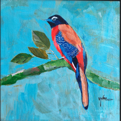 scarlet rumped tanager , 8 x 8 inch, neha  gupta,8x8inch,canvas,paintings,modern art paintings,still life paintings,nature paintings | scenery paintings,photorealism paintings,pop art paintings,realism paintings,animal paintings,realistic paintings,acrylic color,GAL02043234651