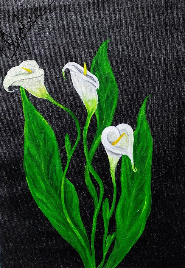 lily on canvas, 12 x 16 inch, sunayana tiwari,12x16inch,canvas,paintings,flower paintings,paintings for living room,paintings for office,paintings for hotel,paintings for hospital,acrylic color,GAL02015334711