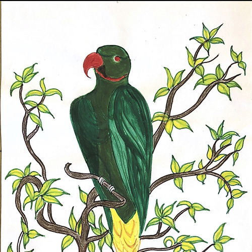 parrot, 8 x 12 inch, dhivya parthiban,8x12inch,thick paper,paintings,animal paintings,paintings for living room,paintings for bedroom,paintings for kids room,paintings for hotel,paintings for living room,paintings for bedroom,paintings for kids room,paintings for hotel,pencil color,watercolor,paper,GAL02183434767