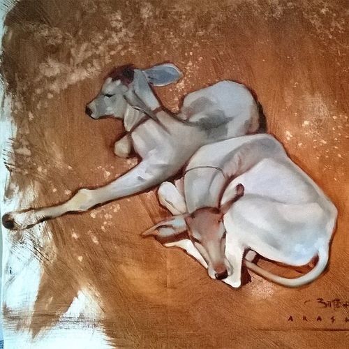 indian , 24 x 24 inch, akash kashid,paintings for living room,animal paintings,canvas,oil,24x24inch,GAL012803479