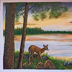 deer, 17 x 12 inch, lin taji,17x12inch,thick paper,wildlife paintings,figurative paintings,landscape paintings,nature paintings | scenery paintings,acrylic color,paper,GAL02190034845