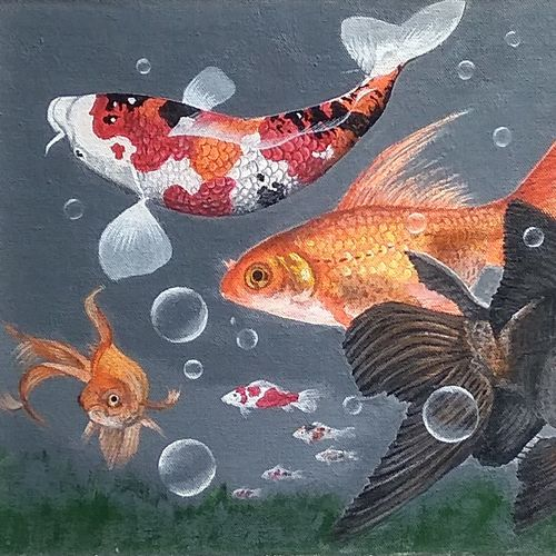 fish, 18 x 12 inch, hemant gharat,18x12inch,canvas,paintings,realistic paintings,paintings for living room,paintings for office,acrylic color,GAL02336035072