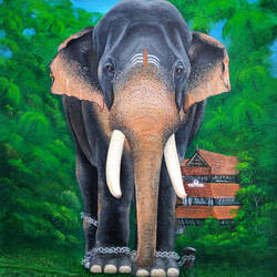 elephant with its full grace, 16 x 20 inch, shobin george,16x20inch,canvas,paintings,wildlife paintings,paintings for dining room,paintings for living room,paintings for bedroom,paintings for office,paintings for bathroom,paintings for kids room,paintings for hotel,paintings for kitchen,paintings for school,paintings for hospital,acrylic color,fabric,GAL02366335267
