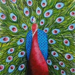 red peacock, 12 x 15 inch, anirudha  patil ,12x15inch,canvas board,paintings,abstract paintings,wildlife paintings,modern art paintings,paintings for dining room,paintings for living room,paintings for bedroom,paintings for office,paintings for hotel,acrylic color,GAL02386535344