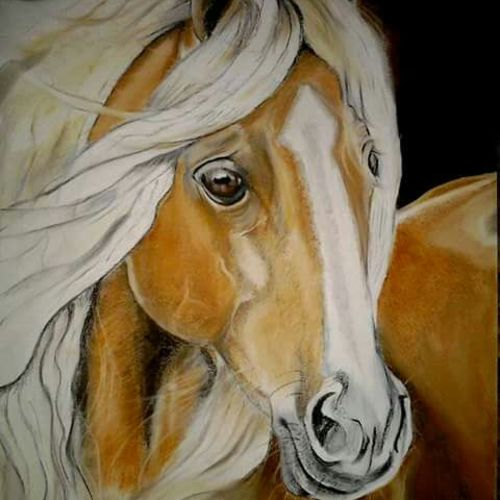 horse  2, 12 x 17 inch, parul srivastava,wildlife paintings,paintings for living room,horse paintings,thick paper,pastel color,12x17inch,GAL012893539