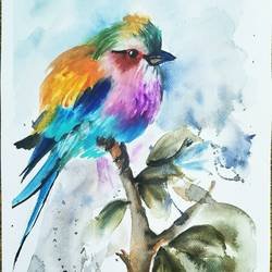 lavender breasted roller bird, 12 x 16 inch, aparna chatterjee,12x16inch,thick paper,paintings,animal paintings,paintings for dining room,paintings for living room,paintings for office,paintings for kids room,watercolor,paper,GAL02394735407