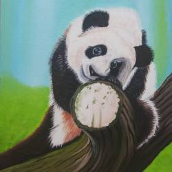beautiful  panda, 14 x 18 inch, sandhya kumari,14x18inch,canvas board,paintings,abstract paintings,wildlife paintings,figurative paintings,nature paintings | scenery paintings,portraiture,animal paintings,love paintings,baby paintings,kids paintings,paintings for dining room,paintings for living room,paintings for bedroom,paintings for office,paintings for bathroom,paintings for kids room,paintings for hotel,paintings for kitchen,paintings for school,paintings for hospital,acrylic color,GAL0365935442