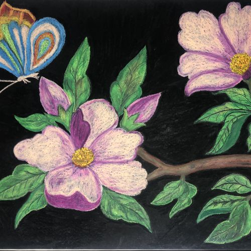 beautiful flowers with butterfly, 29 x 22 inch, surabala mishra,29x22inch,paper,paintings,flower paintings,paintings for living room,paintings for hotel,pastel color,GAL02271335504