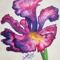 blooming flower, 11 x 17 inch, sudipta jha,11x17inch,thick paper,flower paintings,paintings for dining room,paintings for dining room,watercolor,GAL02420235656